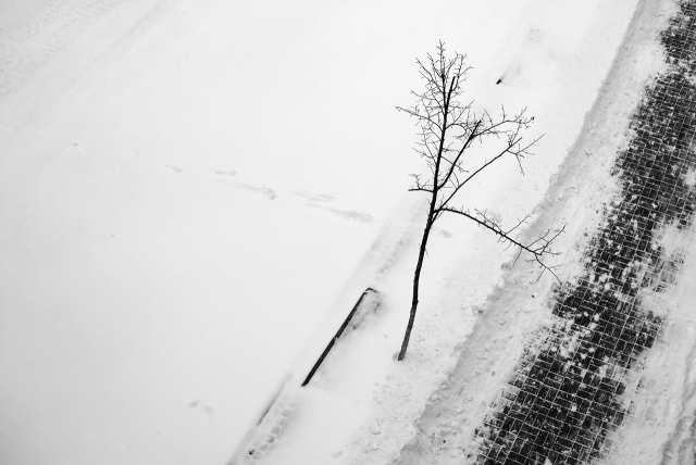 footpath-in-snow